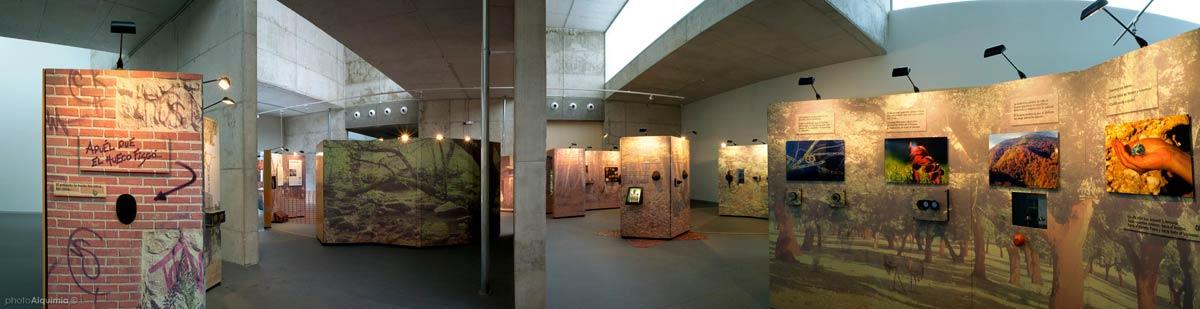 ElBosqueInterior-Atapuerca-photoAlquimia(03)