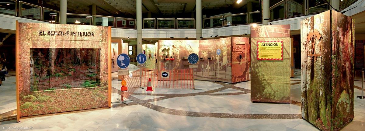 Vista-'El Bosque Interior'-Museo-de-la-Ciudad-@photoAlquimia