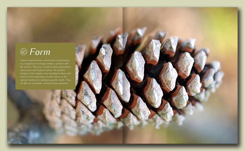 organic-design_photoalquimia_03a